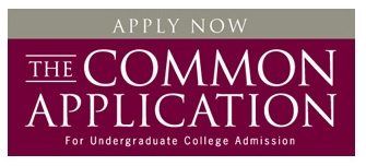 how long should a college essay be for the common app