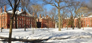 Harvard Admissions Spin, Princeton Admissions Spin, Harvard and Princeton Admission Spin