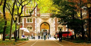 College Admission Essays, University Essays, Ivy League Essays