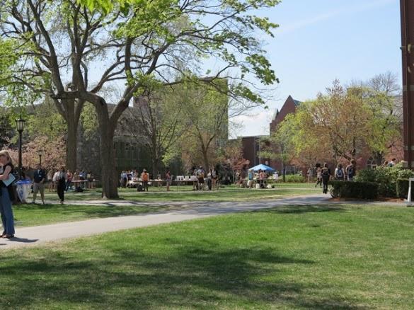 University Marketing Brochures, Ivy League Marketing Brochures, Ivy League Brochures