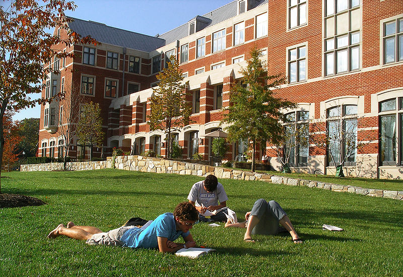 college greek life essay 7 considerations when thinking about greek life the decision to go greek in college has benefits and disadvantages, both for students and parents.